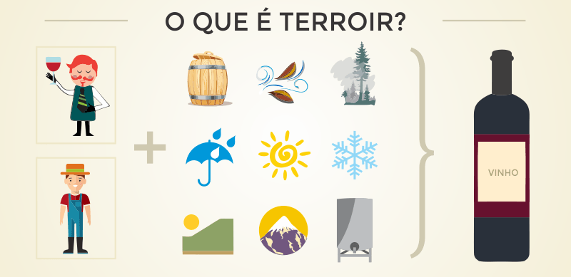 <strong>O que é Terroir:</strong> como ele influencia na qualidade do vinho?