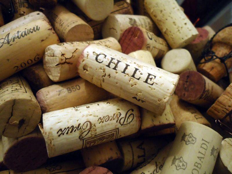 Como o vinho chileno ficou famoso?
