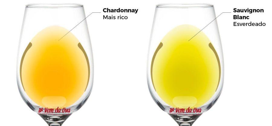 Diferença entre Sauvignon Blanc e Chardonnay