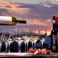 Tipos de Vinhos - Malbec, Merlot, Tannat, Cabernet Sauvignon, Syrah, Pinot Noir?