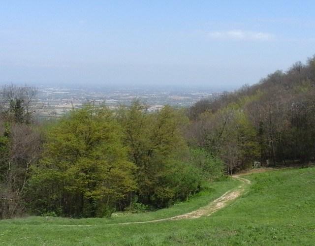 Colli Euganei la passeggiata di Monte Grande