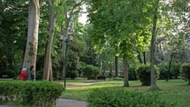 Parco Savorgnan