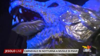 Photo of Carnevale in notturna di Musile di Piave 2019
