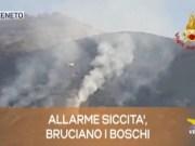TG Veneto: le notizie del 1 aprile 2019