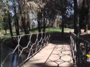 Villa Revedin Bolasco paradiso nascosto dell'Università di Padova