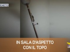 TG Veneto: le notizie del 24 ottobre 2019