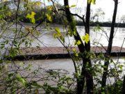 Canoa Club San Donà scomparso il pontile con la piena del Piave