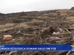 Giornata ecologica a Jesolo: domenica 1 dicembre