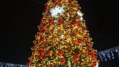 Natale a Mestre e Marghera: accesi gli alberi e le luminarie