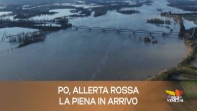 Photo of TG Veneto: le notizie del 26 novembre 2019