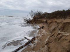 Dune: unica difesa per le coste venete divorate dalle mareggiate