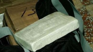 Droga a Mestre: sequestrati un chilo di cocaina ed eroina gialla - Televenezia