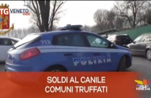 TG Veneto News le notizie del 12 febbraio 2020