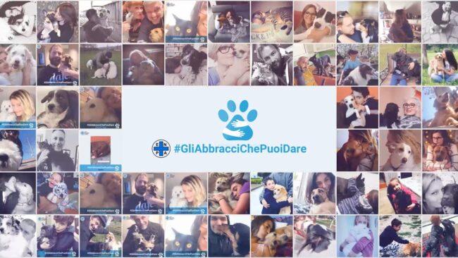 Enpa, l'appello di Borrelli: non abbandonate i cani