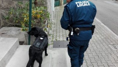 Photo of Lotta allo spaccio: la Polizia locale blocca due pusher