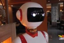 San Donà di Piave: primi ristoranti aperti con camerieri robot
