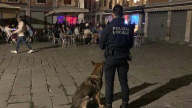 Polizia Locale: denunce per guida in stato di ebbrezza e consumo di droga