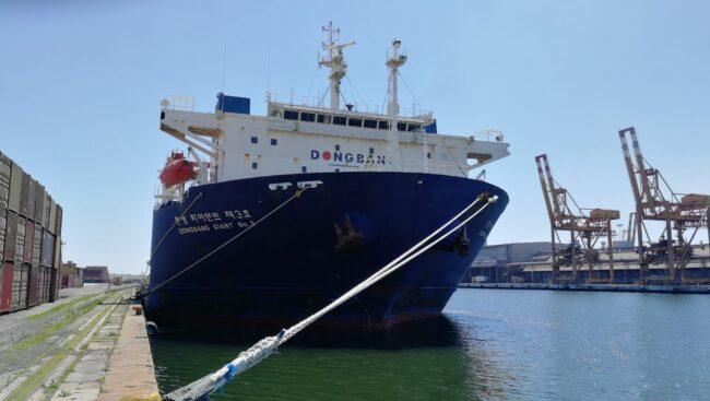 dongbang giant al porto di venezia