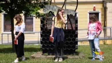 VIDEO: Esapolis: gli insetti, le volontarie e la provincia di Padova - Televenezia