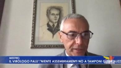 """VIDEO: Il virologo Giorgio Palu: """"no a tamponi generalizzati"""" - Televenezia"""
