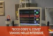 TG Veneto News: le notizie del 16 novembre 2020
