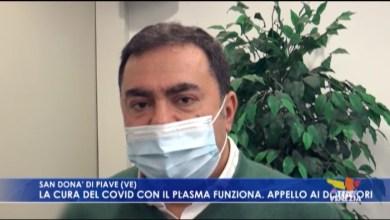 VIDEO: Plasma iperimmune funziona nella cura del Covid. Appello di donatori - Televenezia