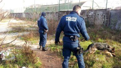 Parco Albanese, gli agenti interrompono lo spaccio: pusher denunciato