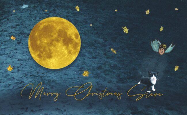 Merry Christmas Steve: viaggio musicale per ricordare Stefano Soffiato - Televenezia