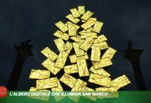 Fabrizio Plessi: l'albero digitale che illumina San Marco