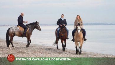 La Poesia del cavallo al Lido di Venezia