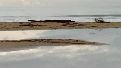 Bibione, spiaggia ripulita. Dalla regione 1,2 milioni per ripascimento
