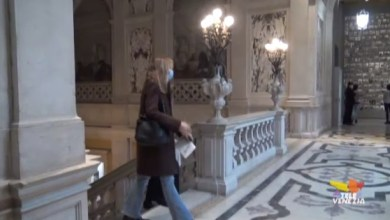 Palazzo Grassi: ingresso gratuito per le prossime date