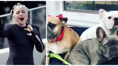 Lady Gaga: finisce bene la vicenda dei cani