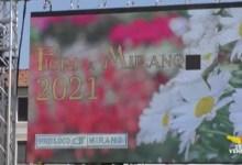 Festa dei fiori Mirano