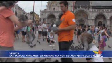 Guardians tornano in azione in Piazza San Marco
