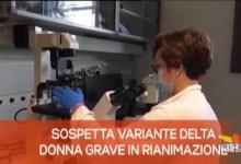 TG Veneto News - Edizione del 29 giugno 2021