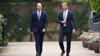 """William e Harry, l'accusa: """"Harry aveva problemi di salute mentale"""""""
