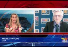 Andrea Vavolo su occupazione e disoccupazione