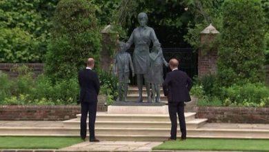 William e Harry e la statua per i 60 anni di Lady Diana