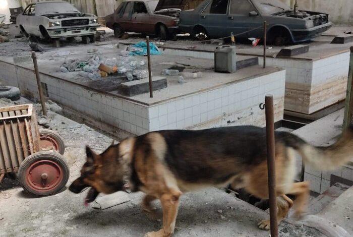 Marghera: sequestrato oltre mezzo chilo di eroina in un capannone