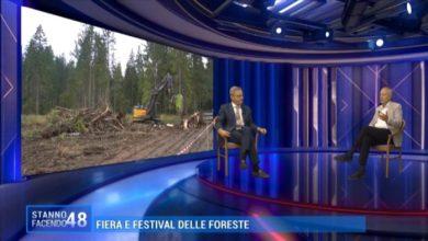 Fiera delle Foreste: evento non solo in presenza ma anche online
