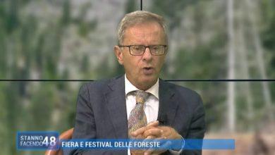 Fiera delle Foreste: un legame profondo tra Belluno e Venezia