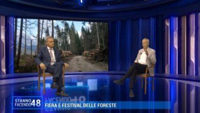 Festival delle Foreste: un progetto nato dopo la tempesta Vaia