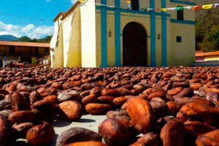 Chuao, el paraíso venezolano que sabe a cacao