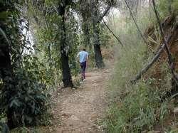 Camino del Paraíso