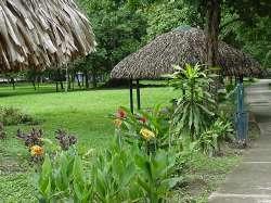 Los jardines del parque