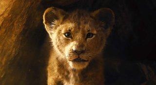 """il giovane simba nel nuovo """"lion king"""" del 2019"""