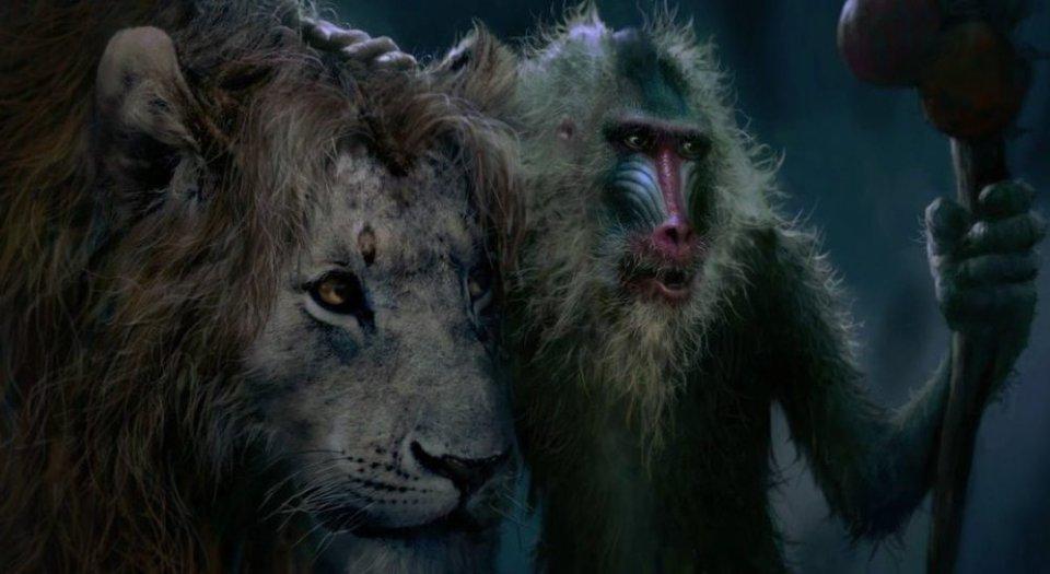 simba è cresciuto ed il saggio rafiki lo accompagna a vedere il padre mufasa