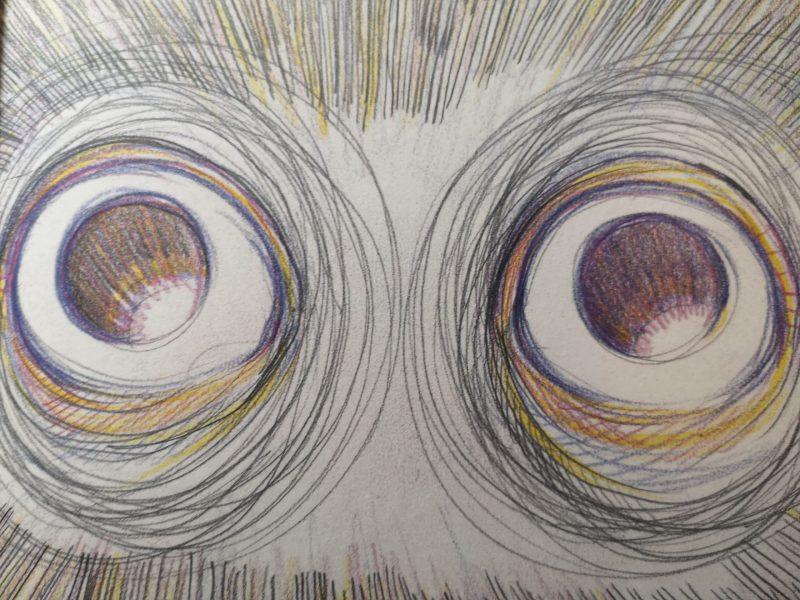gli occhi aperti di pinocchio di alice rovai