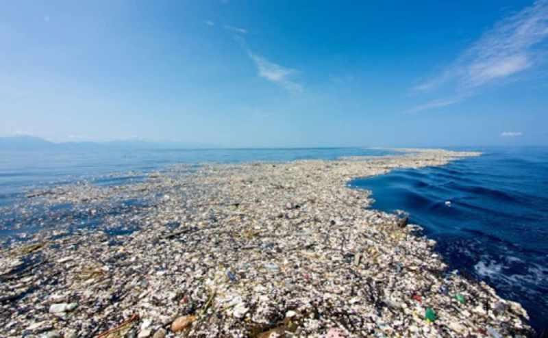 isola plastica